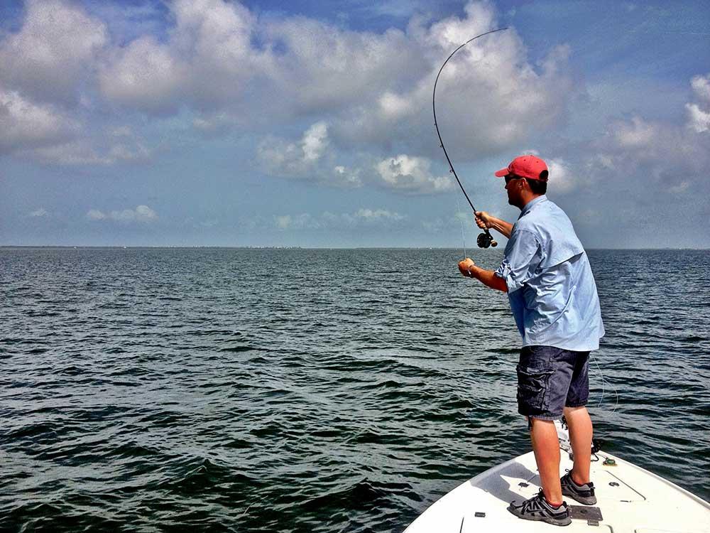 Fly fishing sanibel island pine island sound fishing for Pine island fishing charters
