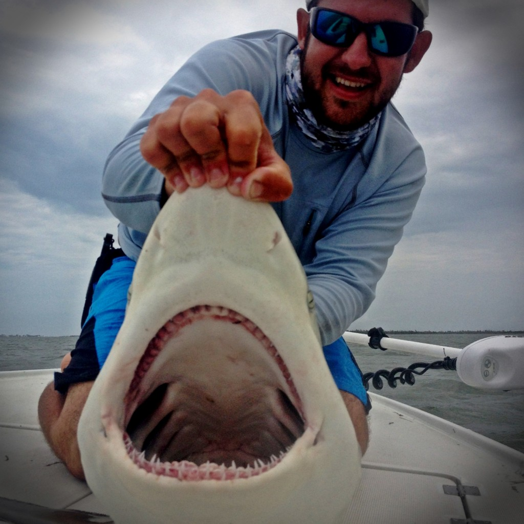 Blacktip-Shark-Charter-Fishing