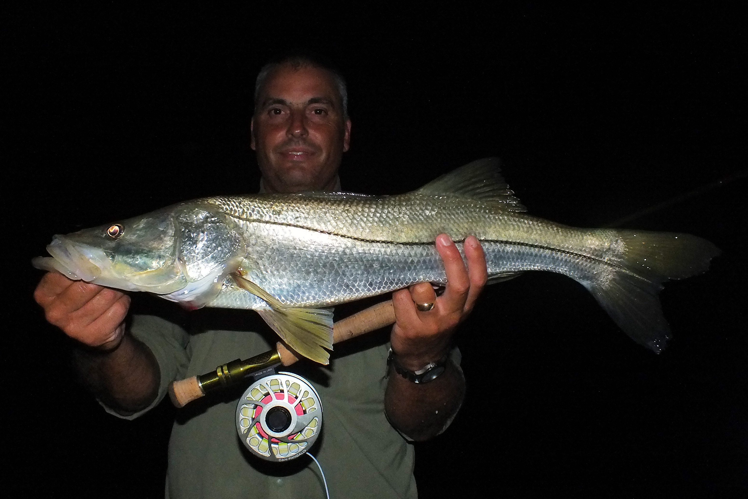 Flyfishing-snook-Sanibel