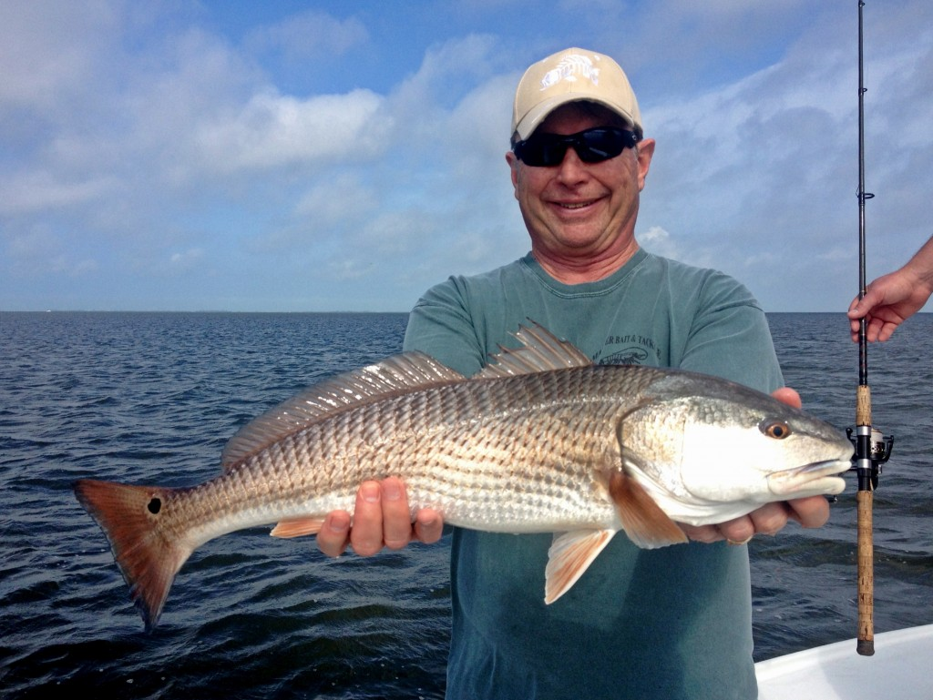 Pine-Island-Sound-Redfish