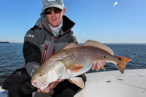 Redfish - Andrews Charters