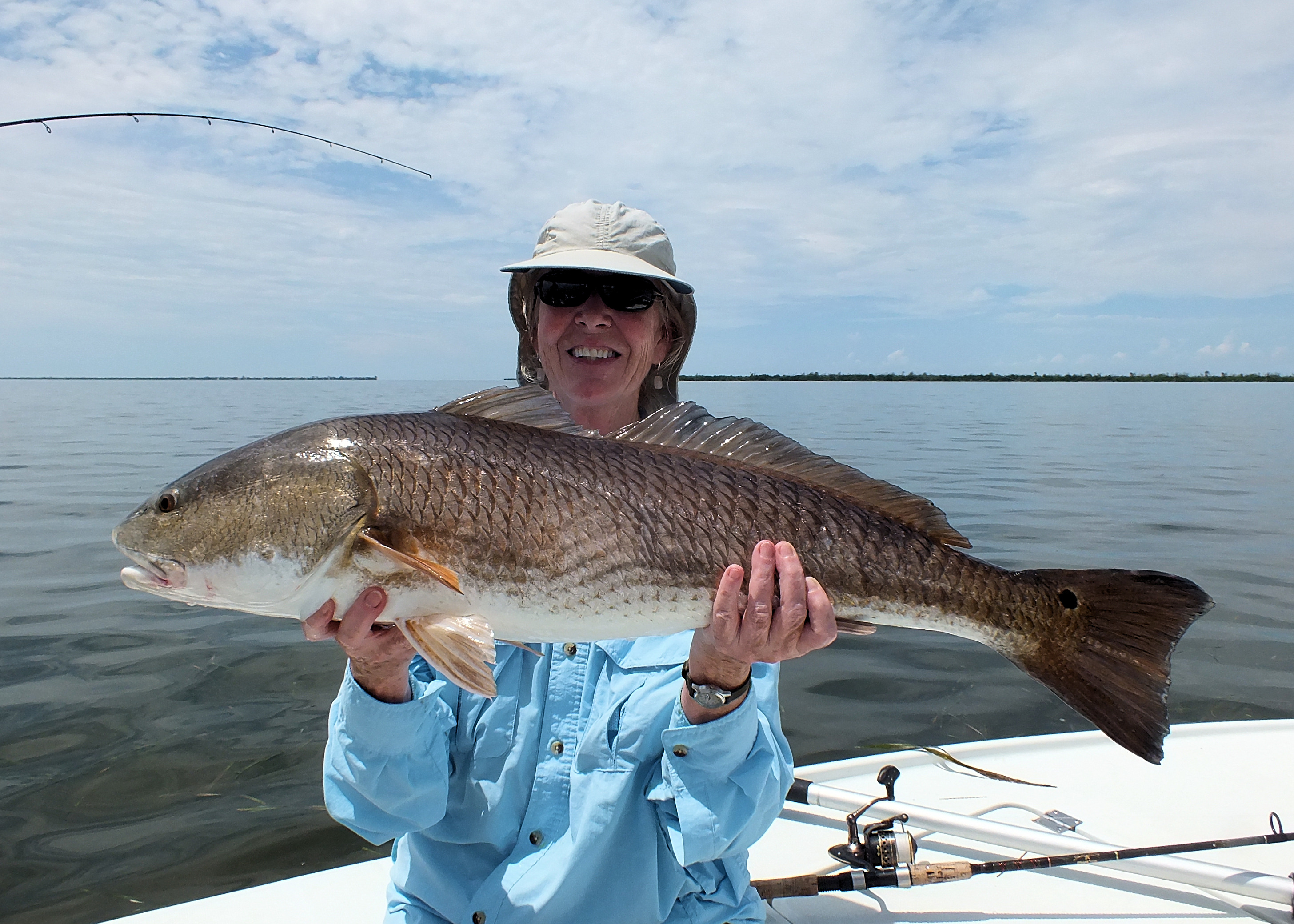 Redfish sanibel island fishing charters for Sanibel island fishing charters