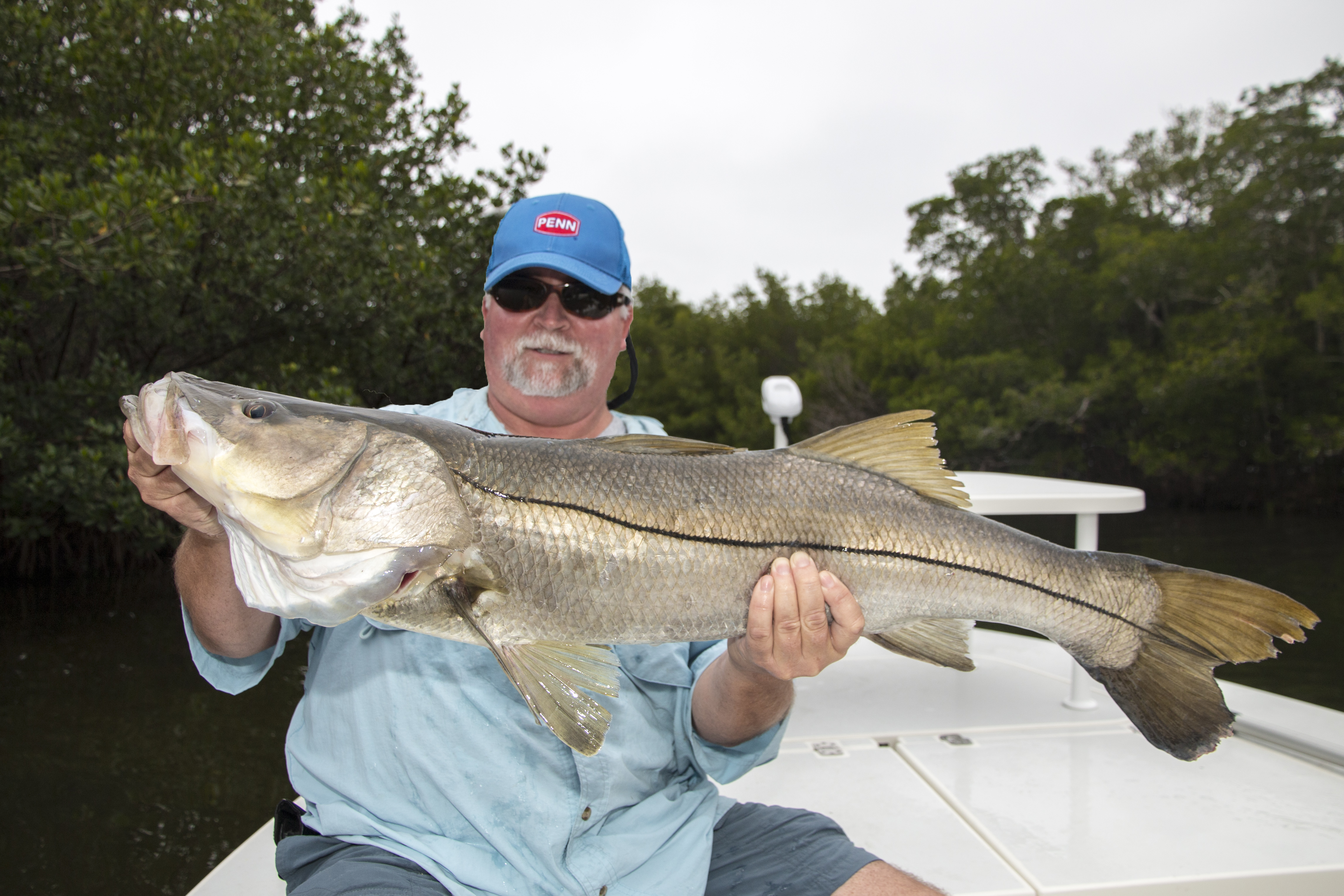 Awesome fishing on sanibel fishing charters sanibel for Sanibel island fishing charters