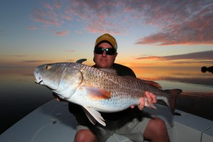 Sanibel Redfish