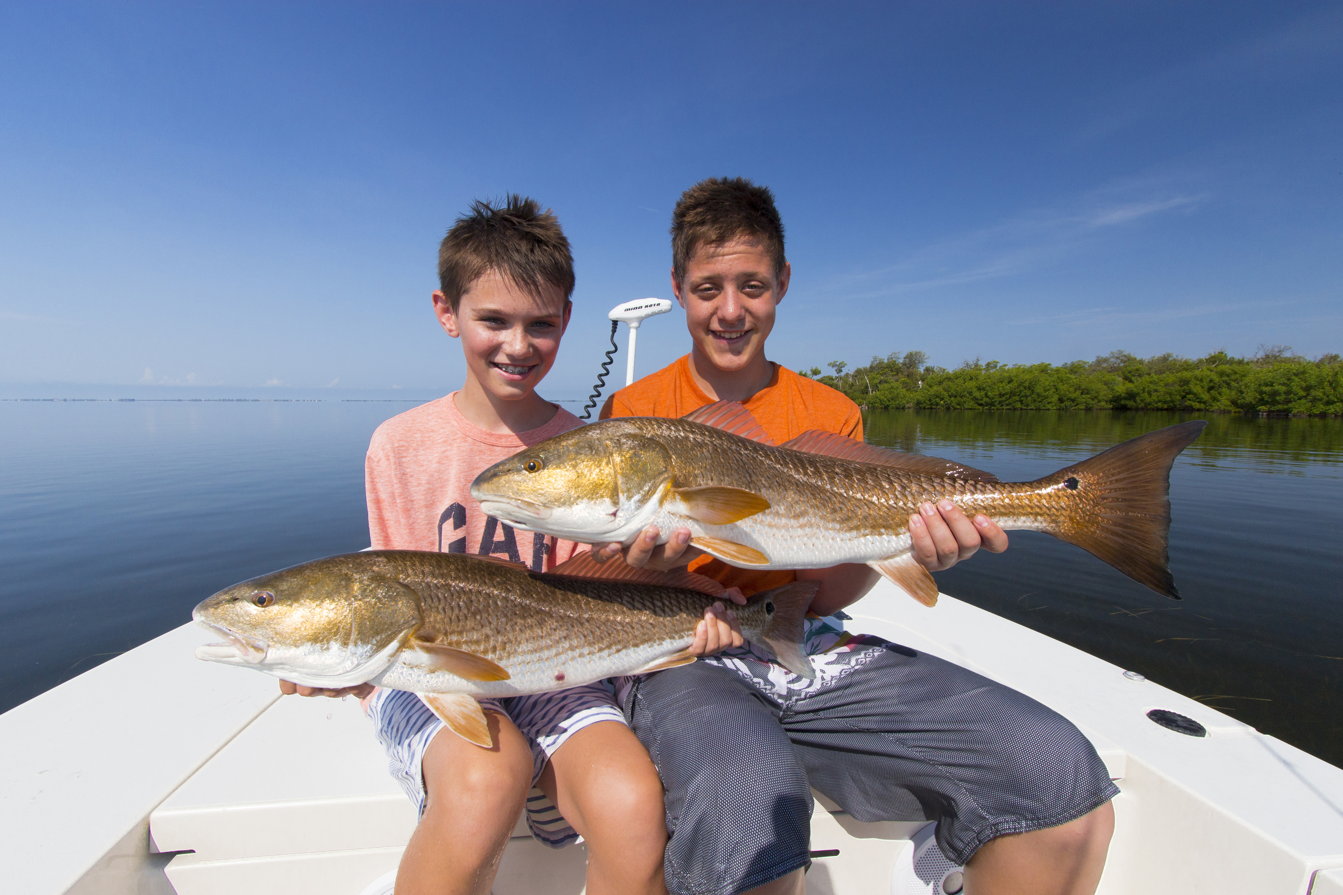 Redfish sanibel island fishing charters andrews for Sanibel island fishing report
